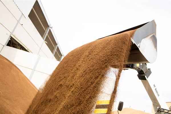 reducir-factura-de-la-lñuz-con-biomasa-jaen